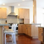 Newton Residence Kitchen